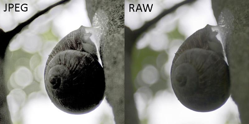 Как сделать из raw в jpg 92